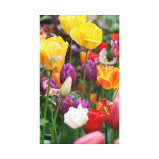 Tulips Wrapped Canvas