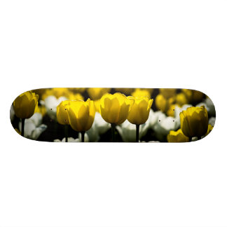 Tulips Yellow And White Skate Board Decks