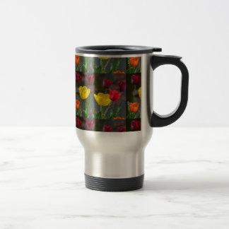Tulpen mehrfarbig blühend Foto extrudiert Tassen