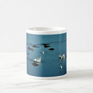 Tundra Swans on Water Basic White Mug