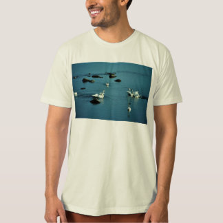 Tundra Swans on Water Shirts