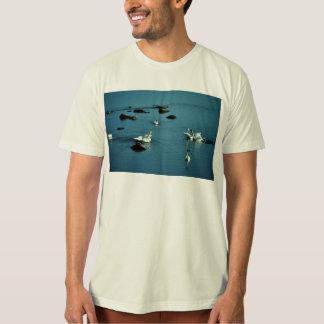Tundra Swans on Water Shirts