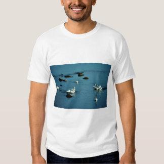 Tundra Swans on Water Tee Shirts