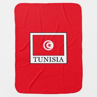 Tunisia Baby Blanket