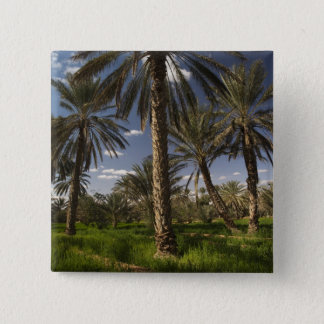 Tunisia, Ksour Area, Ksar Ghilane, date palm 15 Cm Square Badge