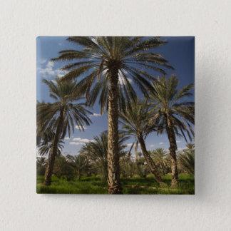 Tunisia, Ksour Area, Ksar Ghilane, date palm 2 15 Cm Square Badge