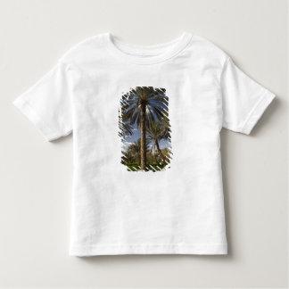 Tunisia, Ksour Area, Ksar Ghilane, date palm 2 Toddler T-Shirt