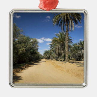 Tunisia, Ksour Area, Ksar Ghilane, date palm Christmas Ornament