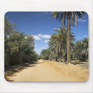 Tunisia, Ksour Area, Ksar Ghilane, date palm Mouse Mat
