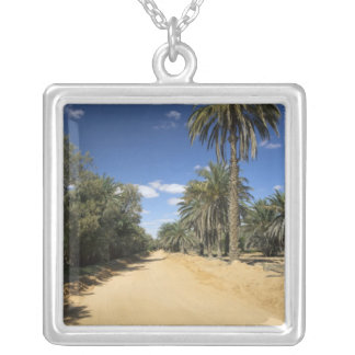Tunisia, Ksour Area, Ksar Ghilane, date palm Silver Plated Necklace