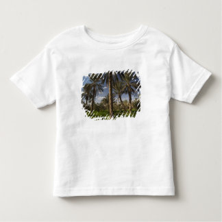 Tunisia, Ksour Area, Ksar Ghilane, date palm Toddler T-Shirt