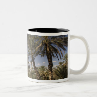 Tunisia, Ksour Area, Ksar Ghilane, date palm Two-Tone Coffee Mug