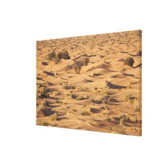 Tunisia, Ksour Area, Ksar Ghilane, Grand Erg 2 Canvas Print