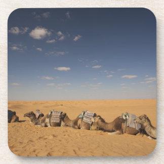 Tunisia, Ksour Area, Ksar Ghilane, Grand Erg 2 Coaster
