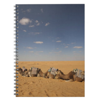 Tunisia, Ksour Area, Ksar Ghilane, Grand Erg 2 Notebook
