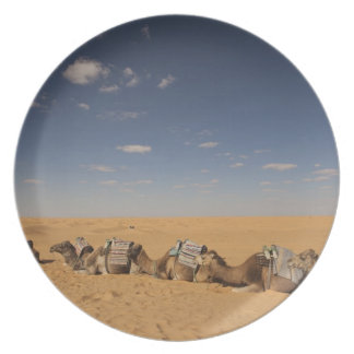 Tunisia, Ksour Area, Ksar Ghilane, Grand Erg 2 Plate