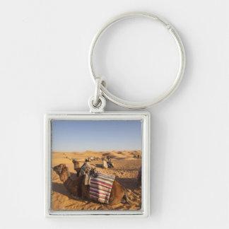 Tunisia, Ksour Area, Ksar Ghilane, Grand Erg 3 Key Ring