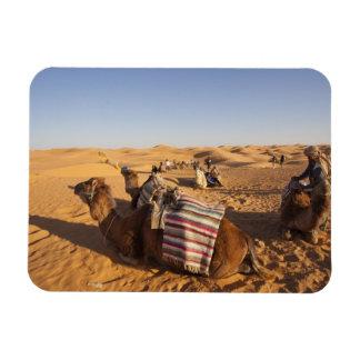 Tunisia, Ksour Area, Ksar Ghilane, Grand Erg 3 Rectangular Photo Magnet