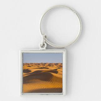 Tunisia, Ksour Area, Ksar Ghilane, Grand Erg 4 Key Ring