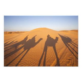Tunisia, Ksour Area, Ksar Ghilane, Grand Erg 4 Photo Print