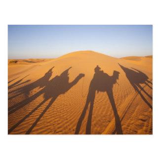 Tunisia, Ksour Area, Ksar Ghilane, Grand Erg 5 Postcard