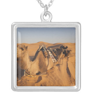 Tunisia, Ksour Area, Ksar Ghilane, Grand Erg 5 Silver Plated Necklace
