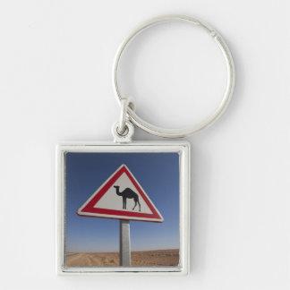 Tunisia, Ksour Area, Ksar Ghilane, Grand Erg 6 Key Ring