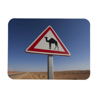 Tunisia, Ksour Area, Ksar Ghilane, Grand Erg 6 Magnet