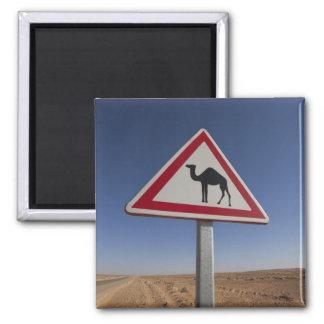 Tunisia, Ksour Area, Ksar Ghilane, Grand Erg 6 Square Magnet
