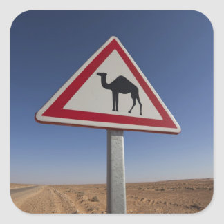 Tunisia, Ksour Area, Ksar Ghilane, Grand Erg 6 Sticker