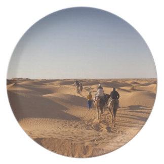 Tunisia, Ksour Area, Ksar Ghilane, Grand Erg 7 Plate