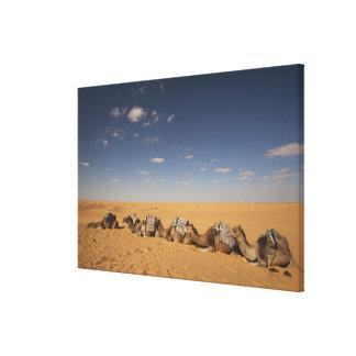 Tunisia, Ksour Area, Ksar Ghilane, Grand Erg Canvas Print
