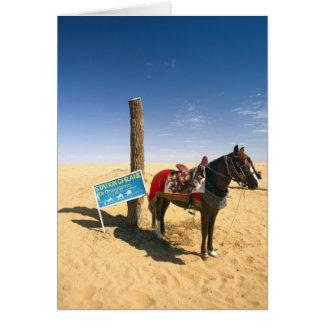Tunisia, Ksour Area, Ksar Ghilane, horse in the Card