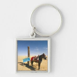 Tunisia, Ksour Area, Ksar Ghilane, horse in the Key Ring