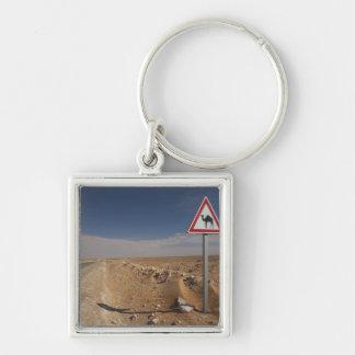 Tunisia, Ksour Area, Ksar Ghilane, Oil Pipeline Key Ring