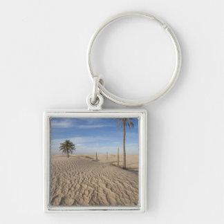 Tunisia, Sahara Desert, Douz, Great Dune, dawn Key Ring