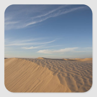 Tunisia, Sahara Desert, Douz, Great Dune, dusk Sticker
