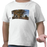 Tunisia, Sahara Desert, Douz, Great Dune, palm