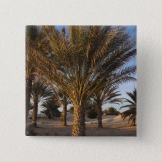 Tunisia, Sahara Desert, Douz, Great Dune, palm 15 Cm Square Badge