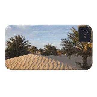 Tunisia, Sahara Desert, Douz, Great Dune, palm 2 iPhone 4 Case-Mate Case