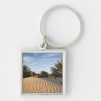 Tunisia, Sahara Desert, Douz, Great Dune, palm 2 Key Ring