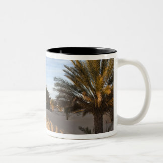 Tunisia, Sahara Desert, Douz, Great Dune, palm 2 Two-Tone Coffee Mug