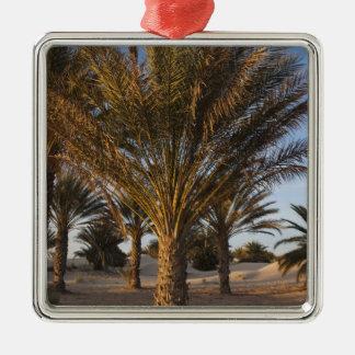 Tunisia, Sahara Desert, Douz, Great Dune, palm Christmas Ornament