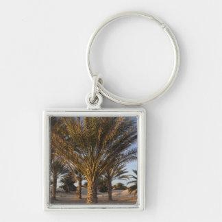 Tunisia, Sahara Desert, Douz, Great Dune, palm Key Ring