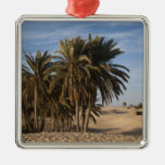 Tunisia, Sahara Desert, Douz, Great Dune, palm Silver-Colored Square Decoration