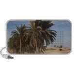Tunisia, Sahara Desert, Douz, Great Dune, palm Speaker