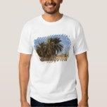 Tunisia, Sahara Desert, Douz, Great Dune, palm T Shirts