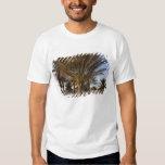 Tunisia, Sahara Desert, Douz, Great Dune, palm Tshirts
