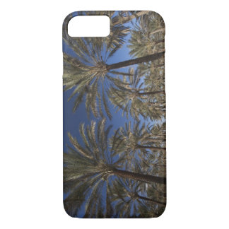 Tunisia, Sahara Desert, Douz, Zone Touristique, 2 iPhone 8/7 Case
