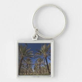 Tunisia, Sahara Desert, Douz, Zone Touristique, 2 Key Ring